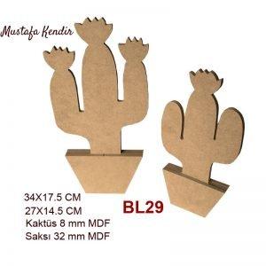 BL29 Kaktüs 12