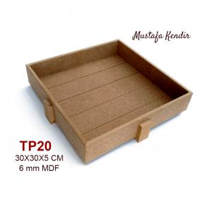 TP20 Tendon