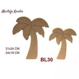 BL30 Palmiye 7