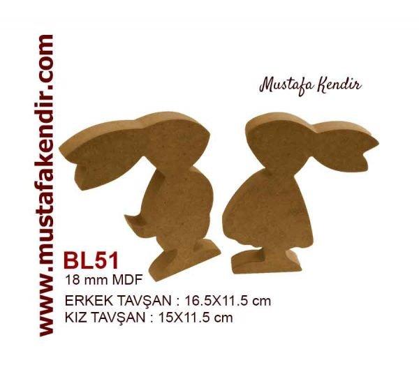BL51 Tavşanlar