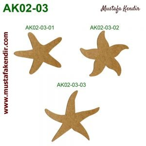 AK02-03 Deniz Yıldızları 10