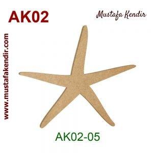 AK02-05 Deniz Yıldızı 8