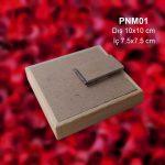 PNM01-2
