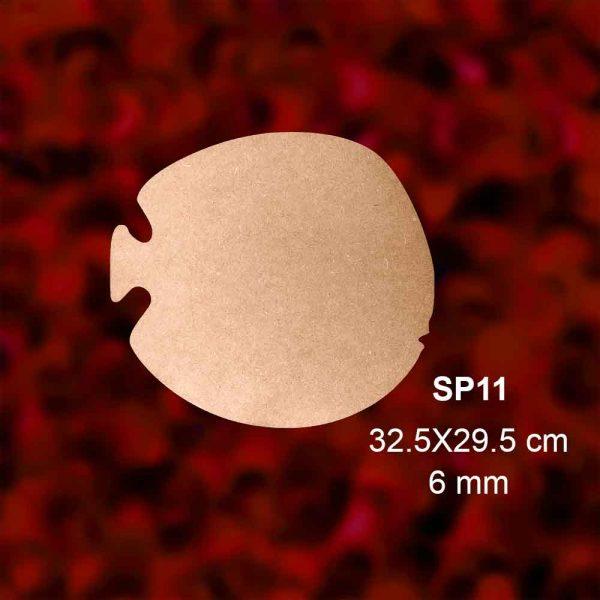 SP11-BALON-BALIĞI