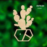 DV70-04-Kaktüs-A