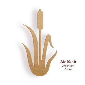 Hasır Otu Typha AK193-19